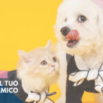 assicurazione cani gatti